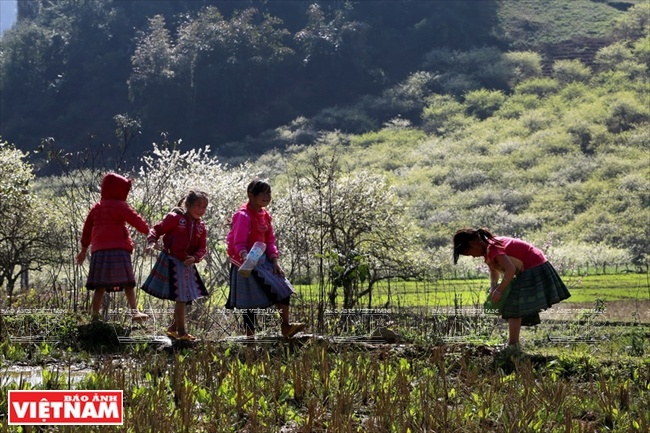 Mong girls in Chieng Di village 1. Photo: Thanh Giang