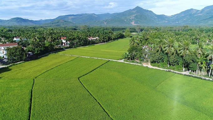 Quảng Ngãi to boost tourism in remote areas