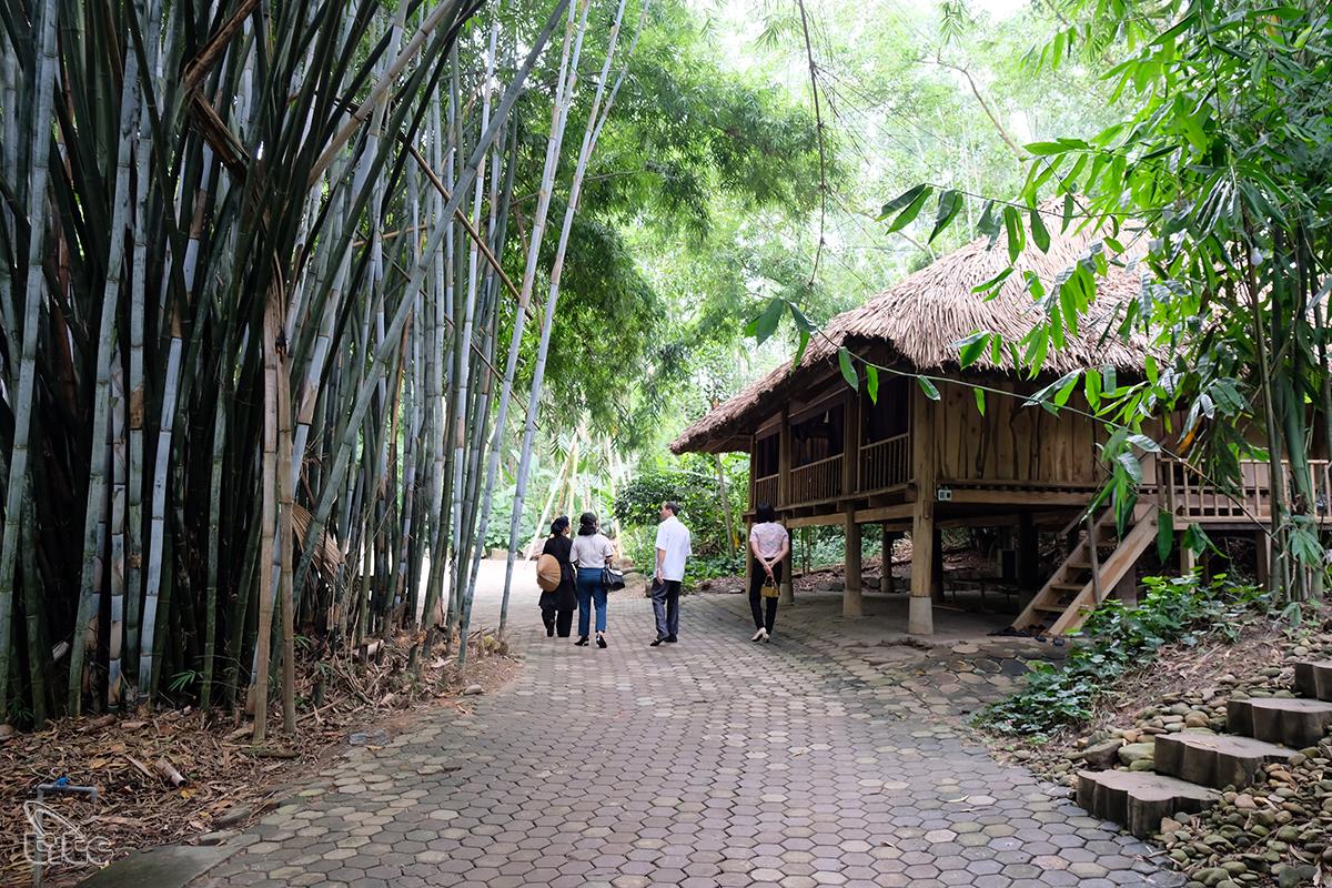 Bắt đầu xây dựng từ năm 2003, đến nay khu bảo tồn làng nhà sàn du lịch sinh thái Thái Hải đã có 16 năm xây dựng và hoàn thiện. Năm 2011, khu bảo tồn làng nhà sàn du lịch sinh thái Thái Hải chính thức được đưa vào khai thác để phục vụ khách du lịch, đến năm 2014, Sở Văn hóa,Thể thao và Du lịch tỉnh Thái Nguyên đã có quyết định công nhận nơi đây là điểm du lịch địa phương