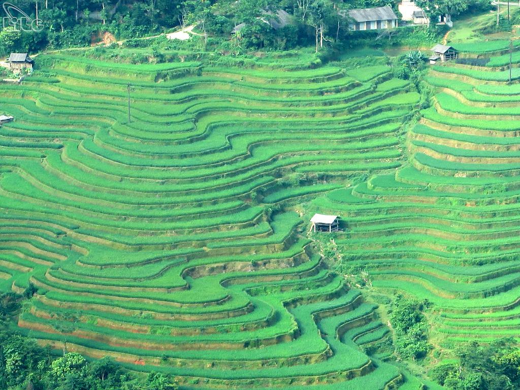 Hoàng Su Phì là huyện vùng núi cao nằm ở phía Tây tỉnh Hà Giang, cách trung tâm hành chính của tỉnh Hà Giang 110km. Nằm trên cung đường nối liền các vùng phía Đông - Tây Bắc nên nơi đây có nhiều cảnh quan hết sức kỳ vĩ, độc đáo